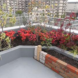 屋上・ベランダ庭園/壁面緑化